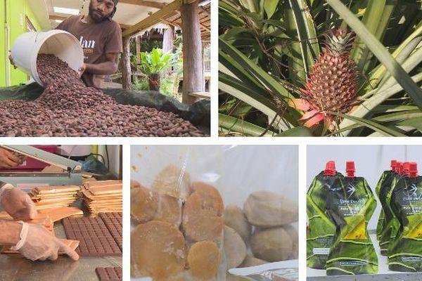 Mosaïque filières du Vanuatu