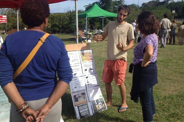 Photo stand végé NC marché des alternatives Boulari Mont-Dore environnement développement durable (4 juin 2017)