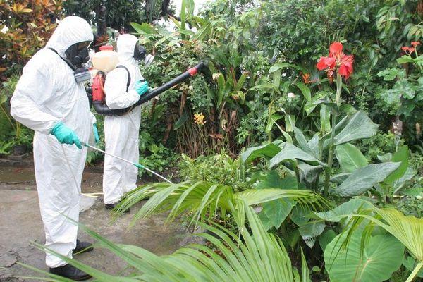 Lutte contre la dengue
