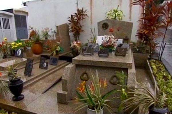 Fête de la Toussaint : chikungunya