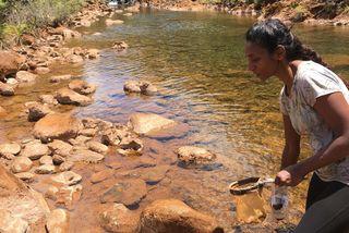 Cours d'eau Grand Sud
