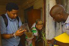 Des agents de la CTM (Collectivité Territoriale de Martinique) se chargent de la lutte contre les gîtes larvaires dans les foyers