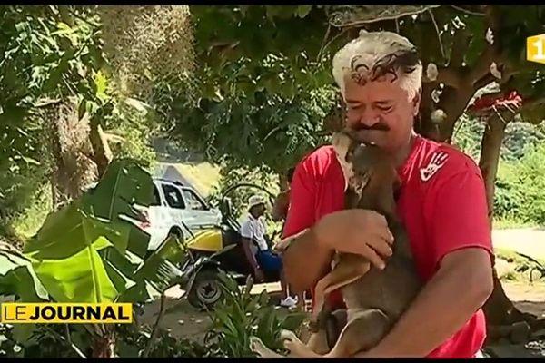 La commune de Bora-Bora fait la chasse aux chiens errants