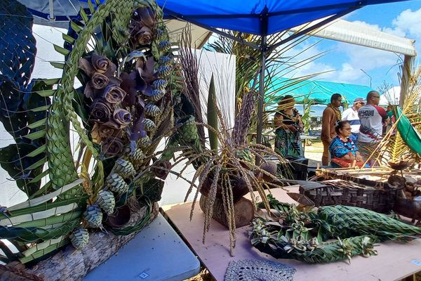 Journée mondiale du cocotier