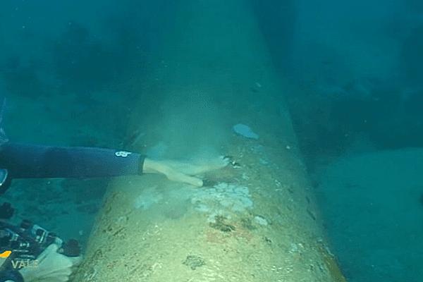 plongeur émissaire marin