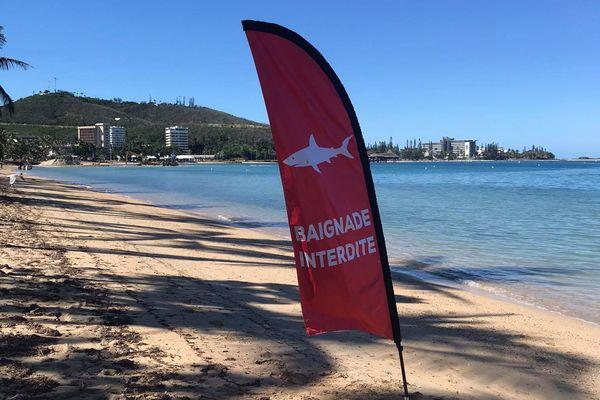 drapeau requins baignade interdite