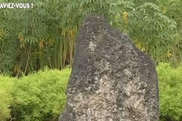 Le saviez-vous ? l'histoire de la pierre dorsale du roi Sakumani  à Futuna