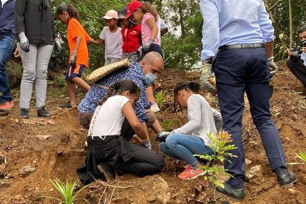 découverte nature week-ends natures département plantation arbre enfants domaine archambaud 091020
