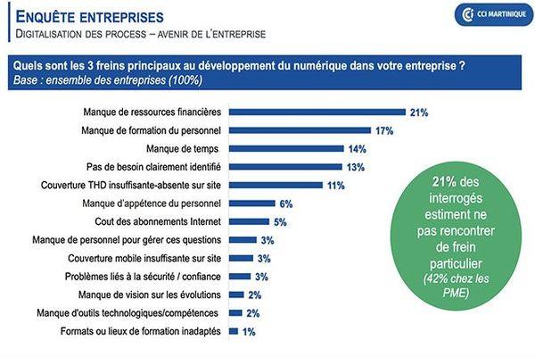 Etude numérique entreprises Martinique