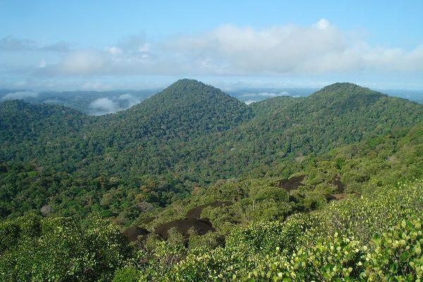 Réserve naturelle des Nouragues