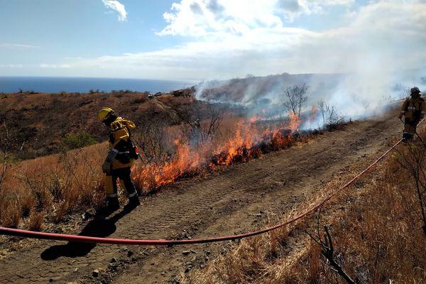 Prévention des feux - Savane Cap la Houssaye - 1