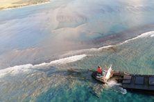 La partie arrière du vraquier japonais repose sur le sable et le récif corallien