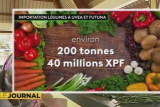 infographie importation légumes