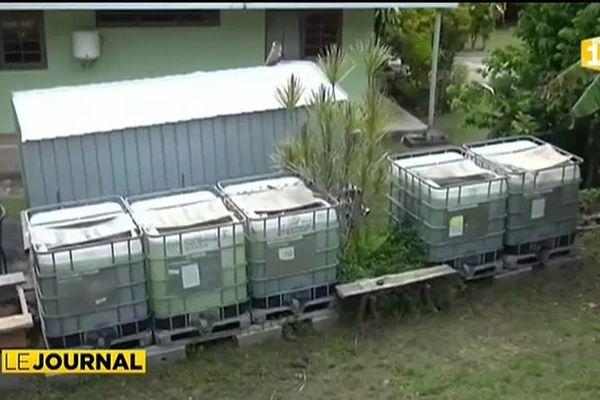 Une ferme pilote d'élevage de tilapias à Raiatea