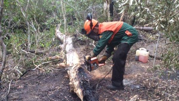 La filière incendie du RSMA de Koumac sur le feu de Poum, 13 novembre 2018