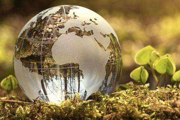 la terre consommée