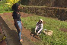 Aurélie Éloïse de retour en Martinique après des études en Angleterre et aux Etats-Unis.