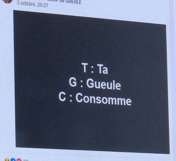 Détournements humoristiques de la TGC