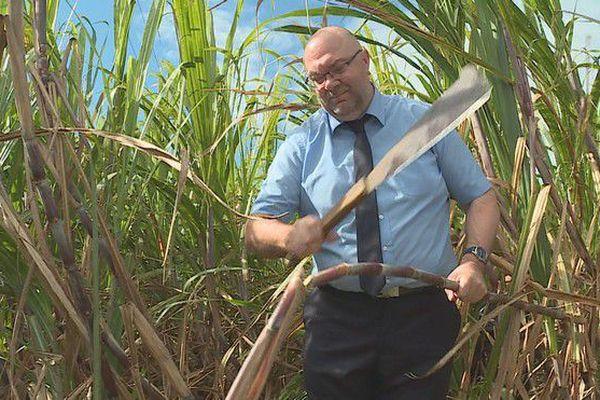Stéphane Travert, ministre de l'Agriculture et de l'Alimentation dans un champ de Sainte Suzanne 110718