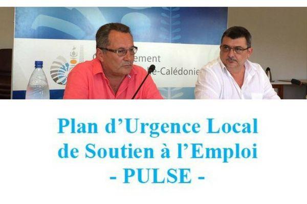 Plan d'urgence local de soutien à l'emploi