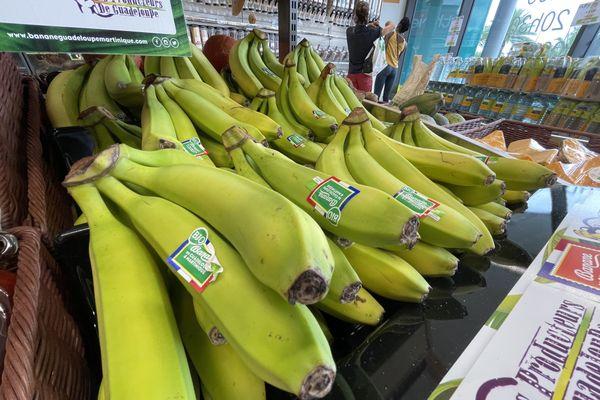 Banane Cavendish bio
