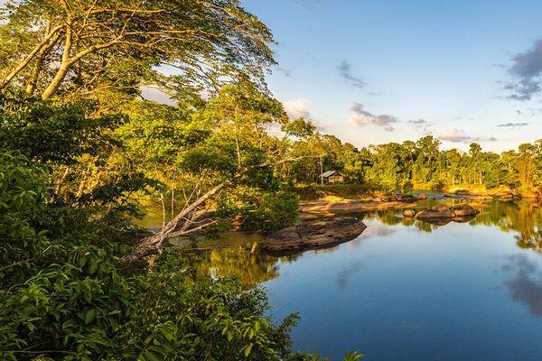 Un superbe cliché de la rivière de Camopi