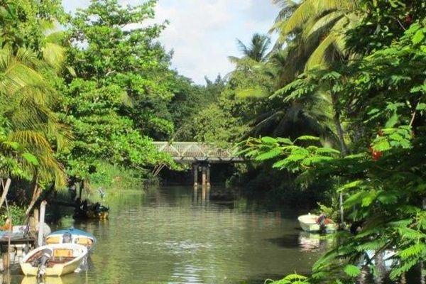 Le Canal des Rotours à Morne-à-l'Eau