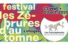 """Affiche du festival """"les Zébrures"""""""