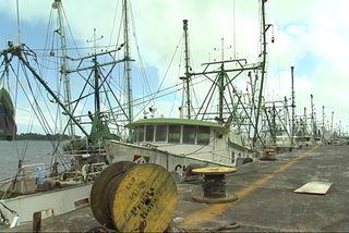 Flotille de pêche à quai