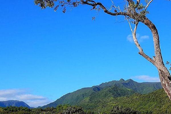 Takamaka sous un beau ciel bleu 27 janvier 2020