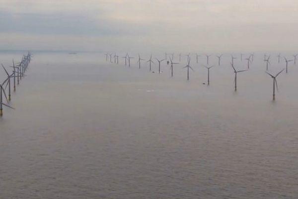 ferme éoliennes maritime