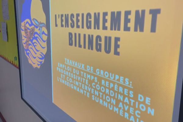 enseignement bilingue