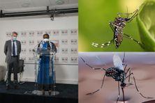 À gauche, la députée Ramlati Ali, rapporteure de la commission d'enquête sur les politiques publiques à mener contre la propagation des moustiques Aedes et des maladies vectorielles.