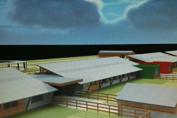 Projet hippodrome pour Anse Bertrand