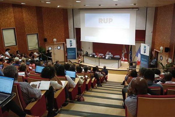 RUP séminaire en Martinique
