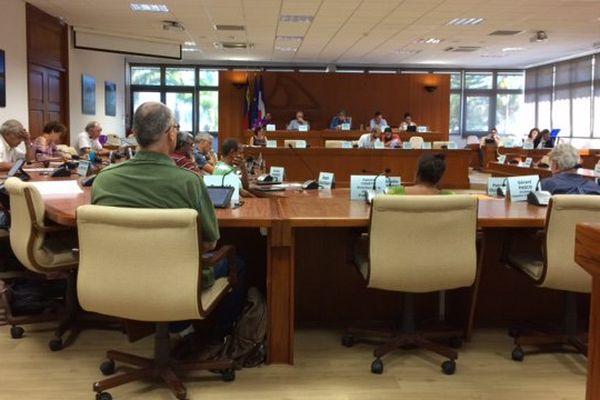 CESE. Conseil économique, social et environnemental