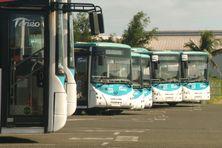 Flotte de bus Tanéo, image d'illustration.