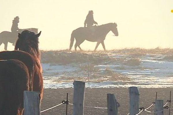 cheval promenade miquelon