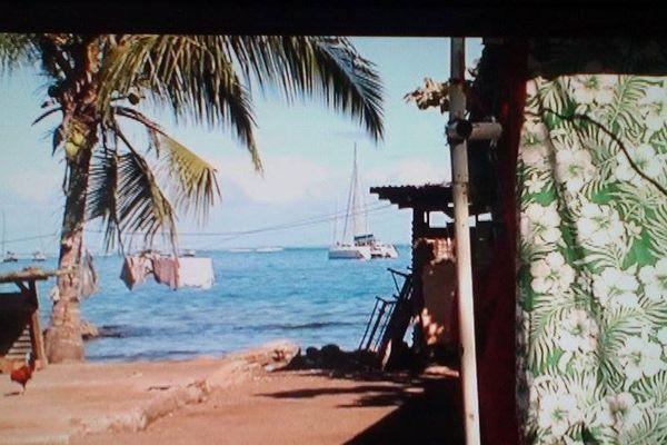 Tahiti Mahana Beach : des familles s'accrochent toujours au terrain