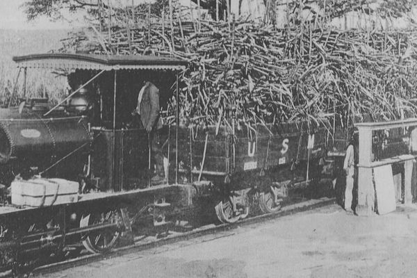 Train de canne à sucre