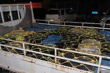 Iles Vierges Britanniques, une partie de la saisie de 2353 kilos de cocaïne.