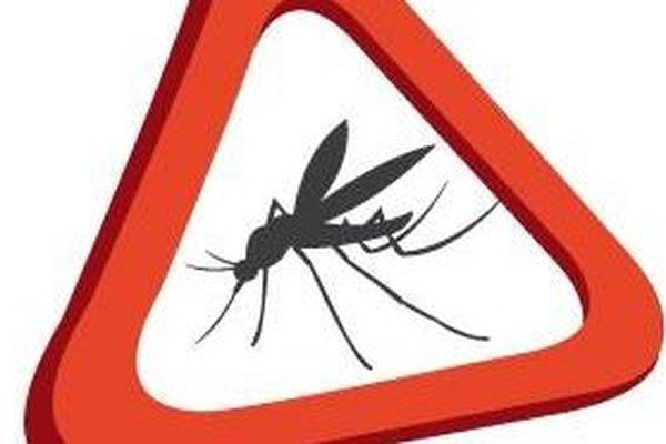 La dengue poursuit sa progression à Mayotte