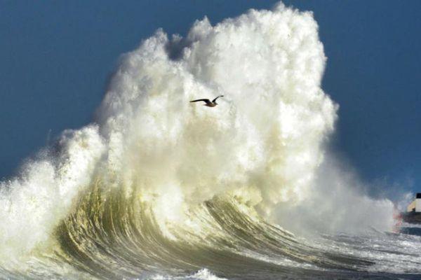 plus haute vague