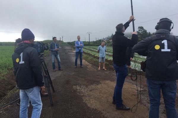 La Réunion Demain - Filière agriculture