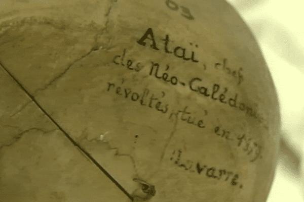 ataï-crane1