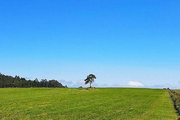 Les Plaines de La Réunion avril 2020