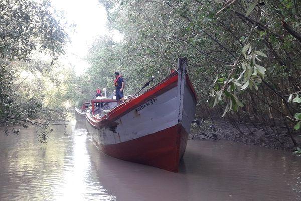 Pour échapper aux douaniers les pêcheurs étrangers vont se cacher dans la mangrove et les criques le long du littoral