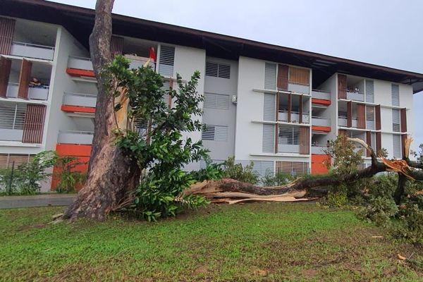 Plusieurs quartiers de Kourou ont été frappés