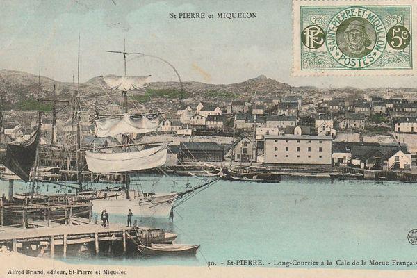 carte postale morue française