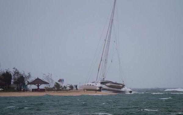 Cata échoué sur l'île aux Canards, ex-Oma, 25 février